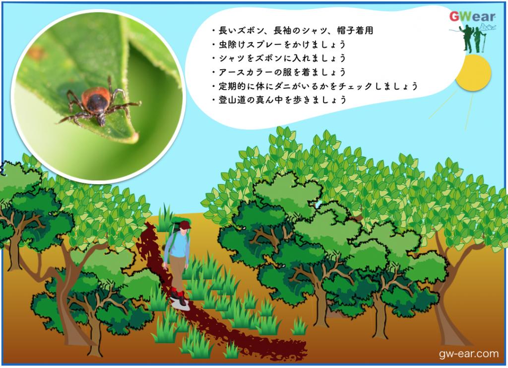 ダニ_対策対処2_gw-ear.com